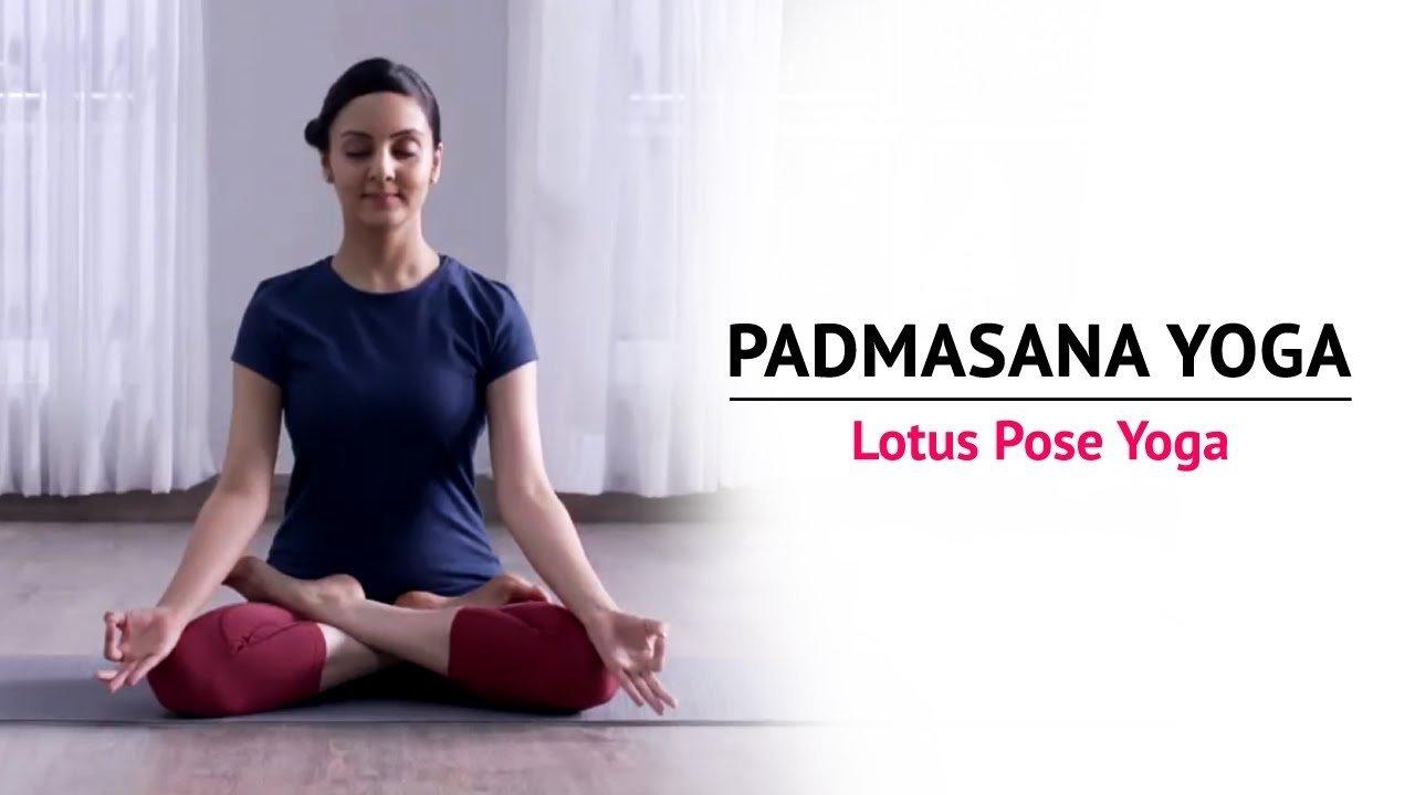 Padmasana or the Lotus Pose